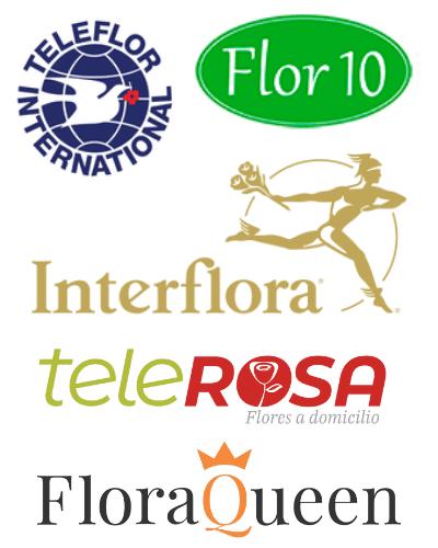 floristeria lara ceuta envios a domicilio mundo 1
