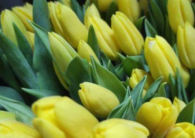 gracias floristería lara ceuta